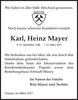 Karl Heinz Mayer